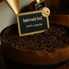Indonésie - Kopi Luwak