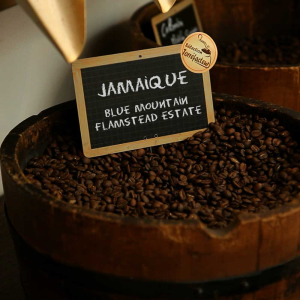 Jamaïque - Blue Mountain - Flamstead Estate