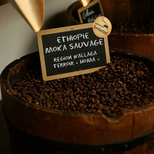 Ethiopie Moka Sauvage - Région Walläga - Terroir « Homa »