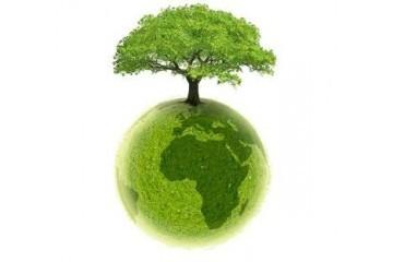 Ethical Coffee Company, un café qui respecte l'environnement et votre porte-monnaie