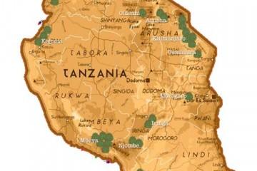 Des nouveaux arômes de Tanzani
