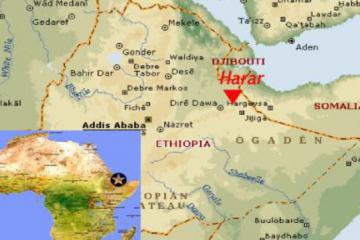 Les cafés d'Ethiopie, Moka Harrar